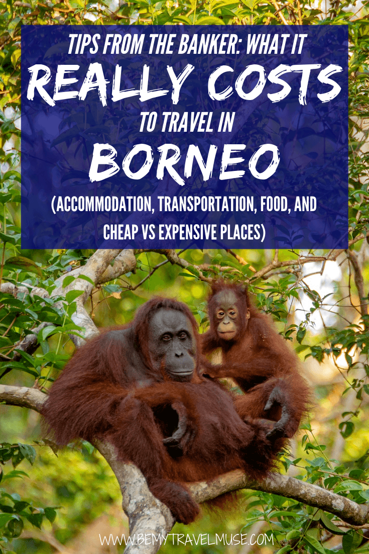 An honest breakdown on the cost of traveling Borneo, from accommodation, transportation, food to other expenses. This article will help you plan the best trip to Borneo! #Borneo #BorneoTravelTips
