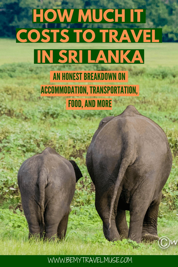 How much it really costs to travel in Sri Lanka? This article breaks down the accommodation, transportation, food and other costs to help you plan an amazing trip to Sri Lanka on a budget. #SriLanka #SriLankaTravelTips
