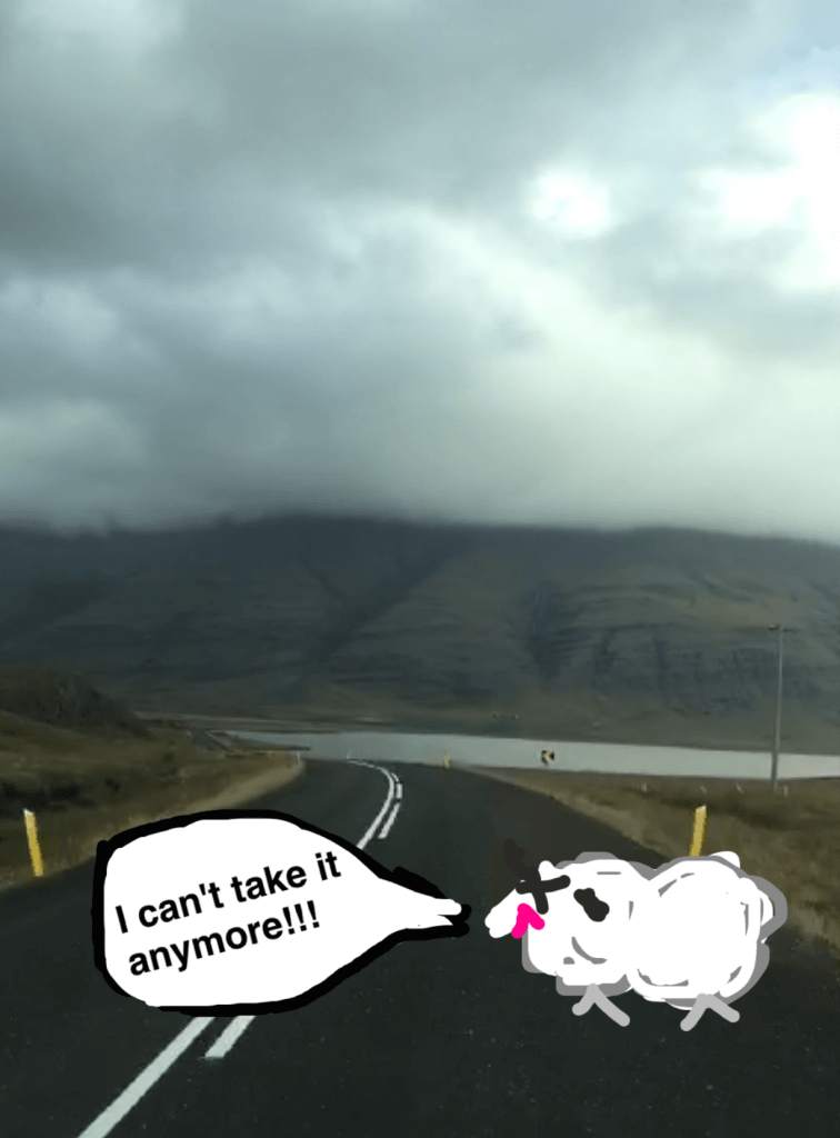 iceland ring road tips