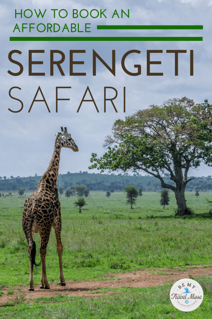 18e1b12729 How to Book an Amazing (and Affordable) Safari in The Serengeti
