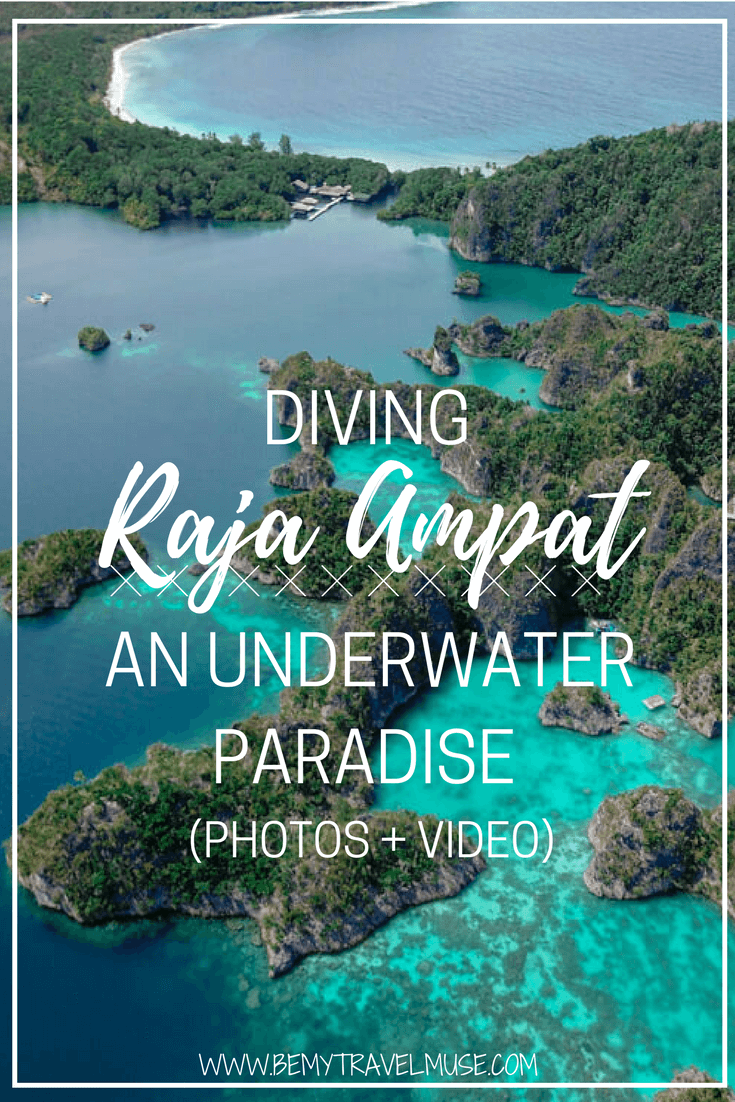 This has to be the best dive trip yet, and I have done more than 150 dives! Raja Ampat, an underwater paradise. See it for yourself (photos + video!) | Raja Ampat Islands | Diving Raja Ampat Indonesia |