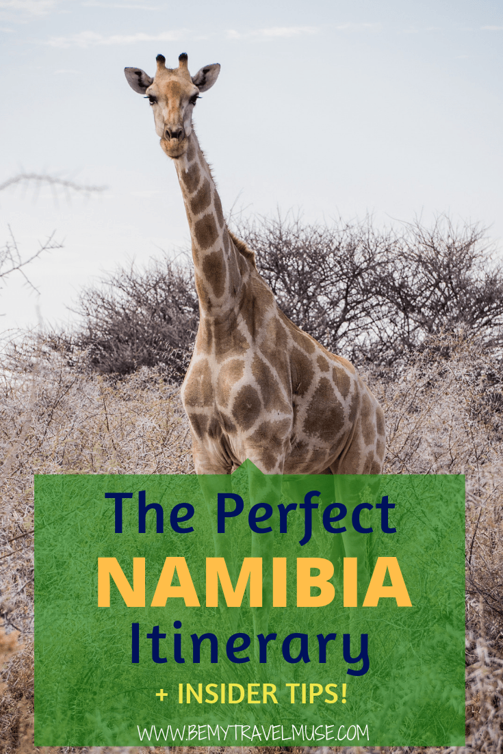 Namibia is one of the best African countries to travel in. Here's an awesome Namibia itinerary with all of the best stops, accommodation guides, and hiking information that will help you plan your trip. Click to read more! #Africa #Namibia